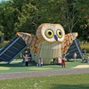 IS0169CZ The Owl_0000 ANOT
